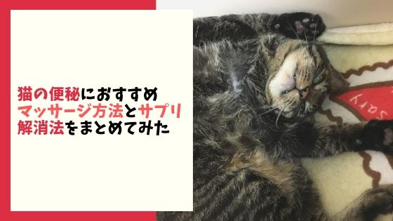 【猫の便秘に】おすすめのマッサージやサプリなどの解消法をまとめてみた