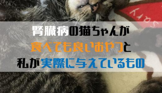 <腎臓病の猫に>おすすめのおやつと実際にあげているおやつ7選